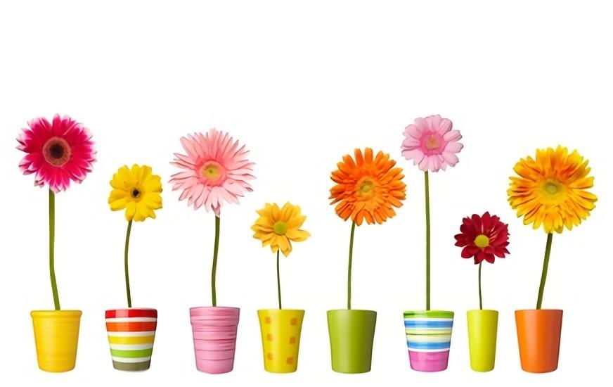 いろんな色のお花が植木鉢に一本ずつ入って並んでる